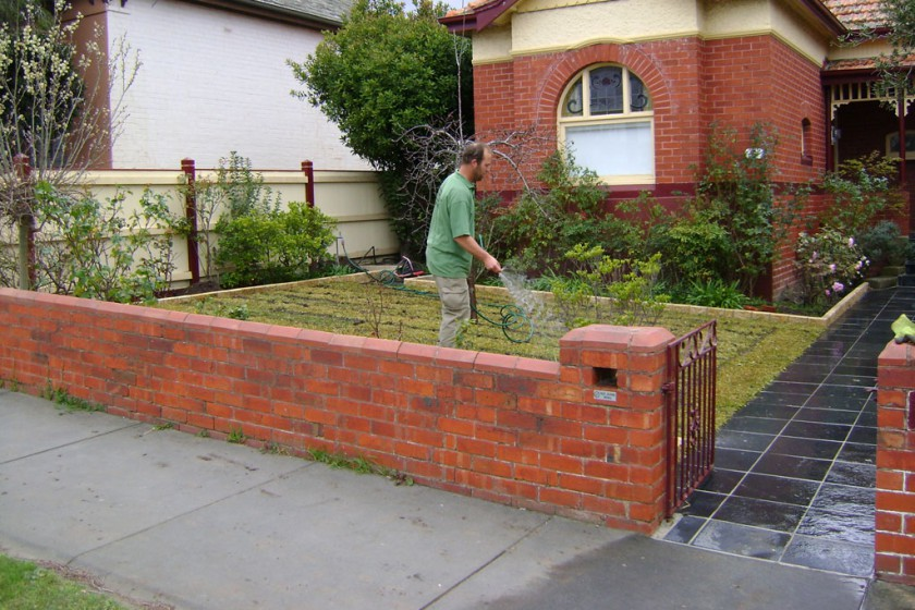 Hawthorn – Front Lawn